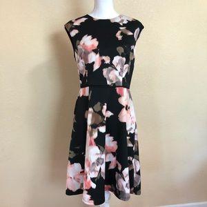 Maggy London US Size 12 Black & Floral Dress